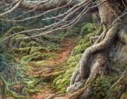 «Le vieil arbre»